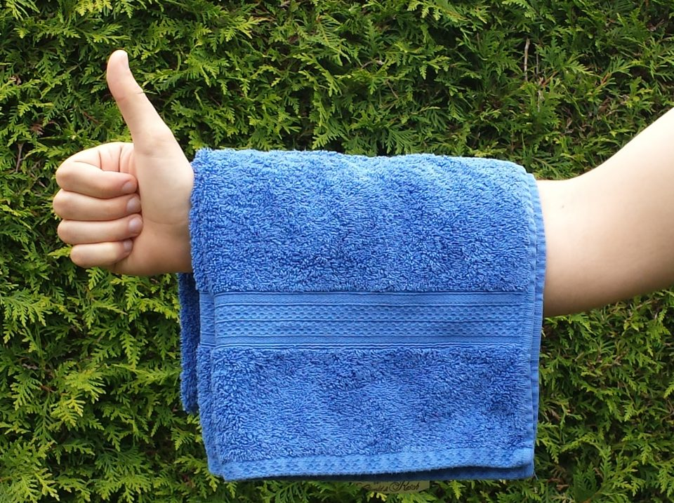 Towel Day 2016